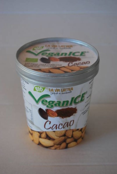 LOGO_Ice cream made from almonds