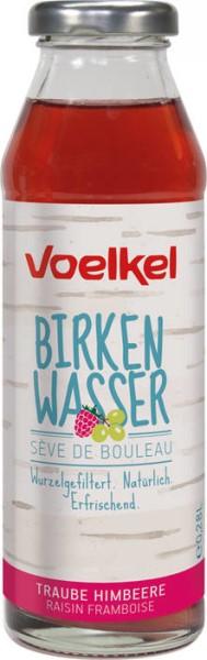 LOGO_Birkenwasser Traube Himbeere