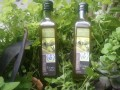 LOGO_Eden Olive Oil