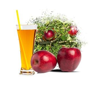 LOGO_Apple Puree & Juice Concentrate