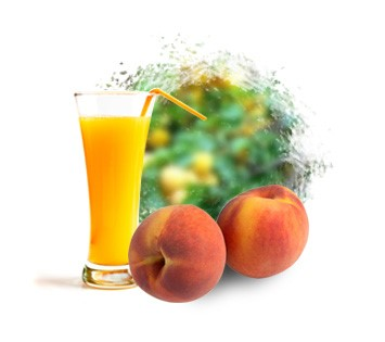 LOGO_Peach Puree & Puree Concentrate