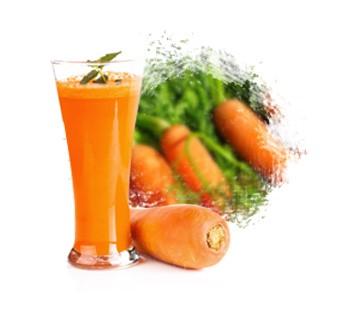 LOGO_Orange & Black Carrot Juice Concentrate