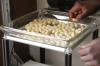LOGO_Organic macadamia, raw, raw-food quality