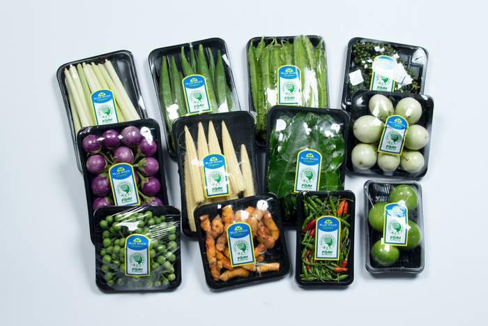 LOGO_Organic fresh vegetables