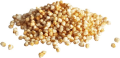LOGO_Organic quinoa puffed