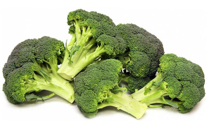 LOGO_Broccolo (Brassica oleracea var. italica)