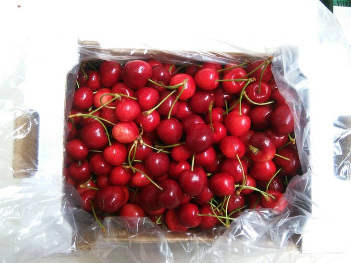 LOGO_Cherries