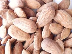 LOGO_Natural Organic Largueta Spanish almonds