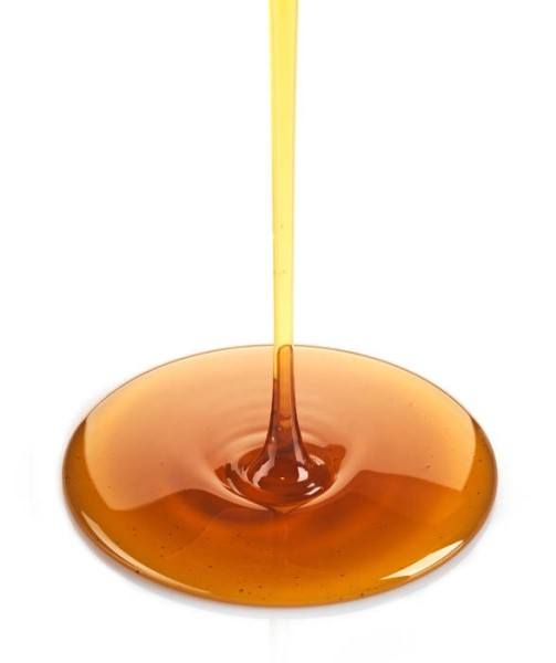 LOGO_Yacon syrup