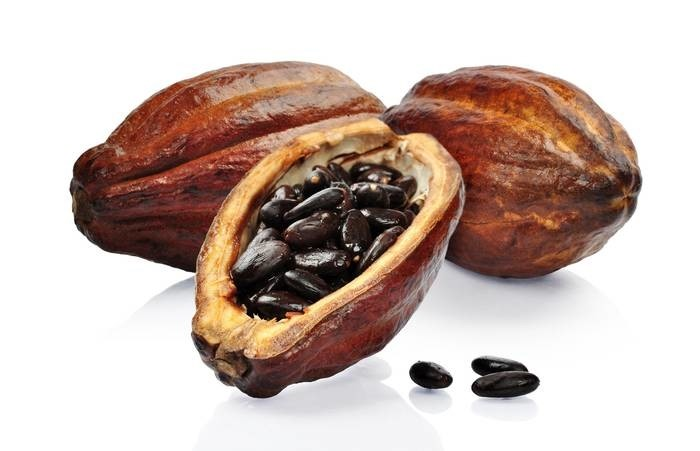 LOGO_Cacao nibs and powder