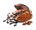 LOGO_Cacao and subproducts