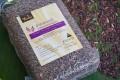 LOGO_Organic Riceberry Rice