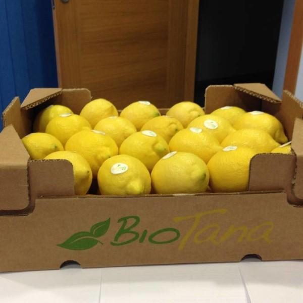 LOGO_Bio Lemons