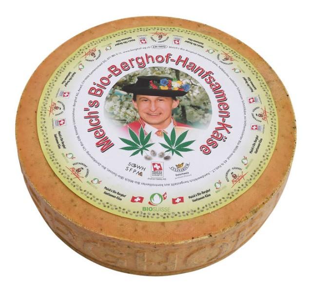 LOGO_Melch's Bio-Berghof-Hanfsamen-Käse