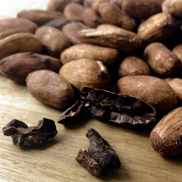 LOGO_criollo cocoa