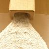 LOGO_macadamia flour