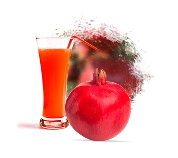 LOGO_Pomegranate Juice Concentrate & NFC