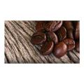 LOGO_Organic Teas & Coffees