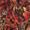 LOGO_Blütenpotpourries
