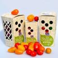 LOGO_Green Packaging Solutions
