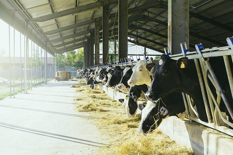 LOGO_Unsere Förderangebote für die Landwirtschaft