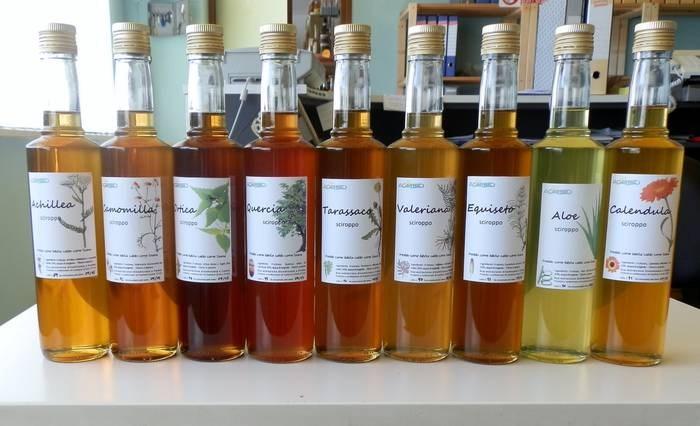 LOGO_Biodynamic syrup