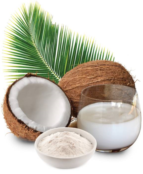 LOGO_Organic Coconut Milk Powder