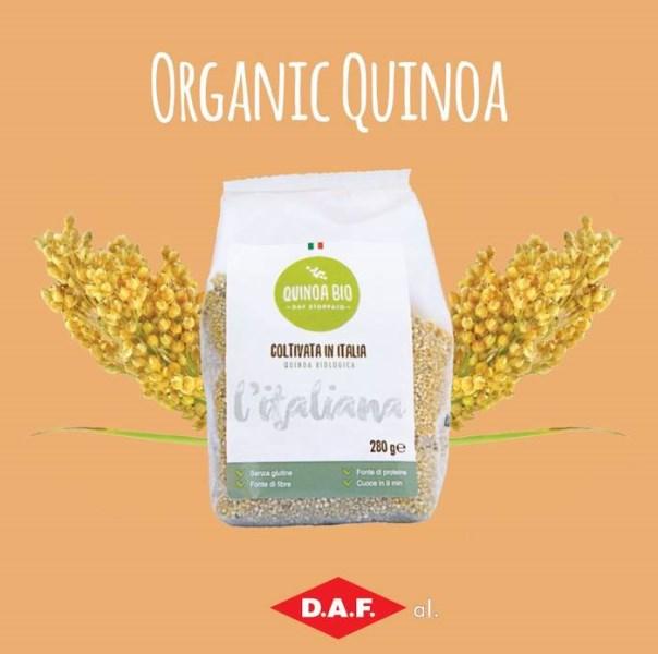 LOGO_Organic Italian Quinoa