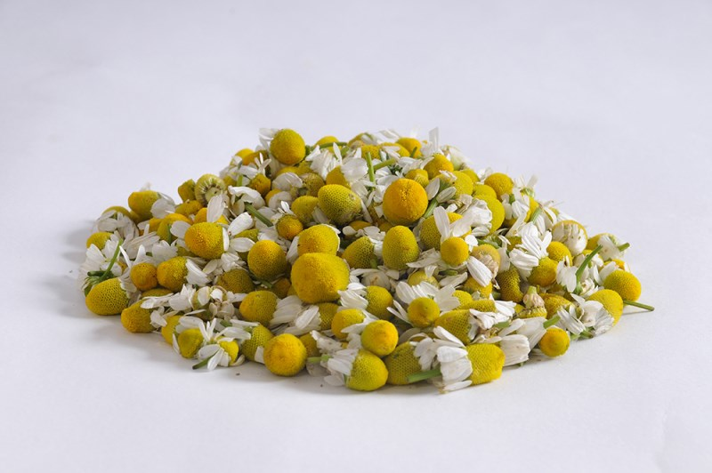 LOGO_Chamomile Flowers Grade A