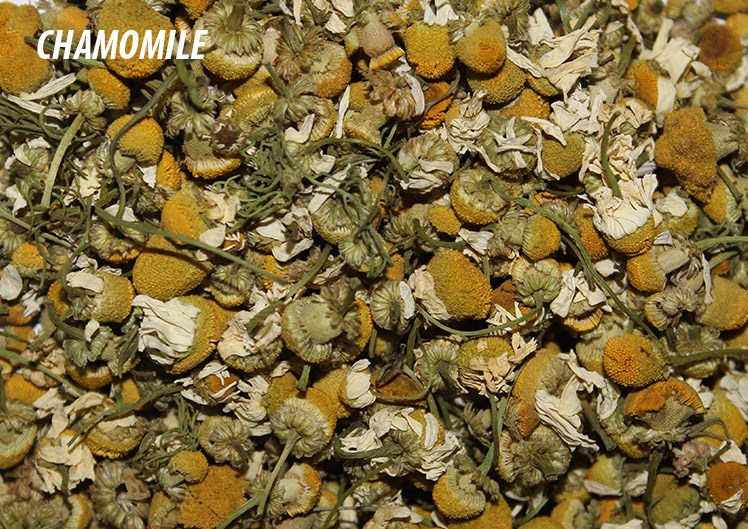 LOGO_Organic Chamomile Flowers