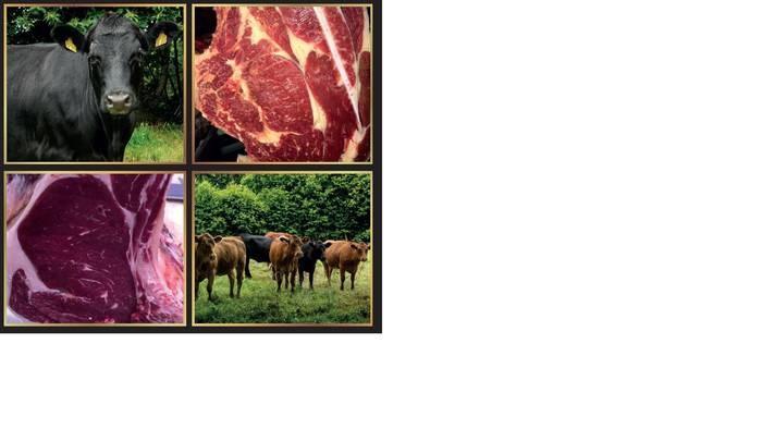LOGO_Angus Meat
