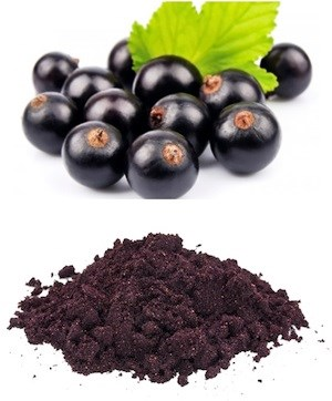 LOGO_Organic Maqui Berry Powder