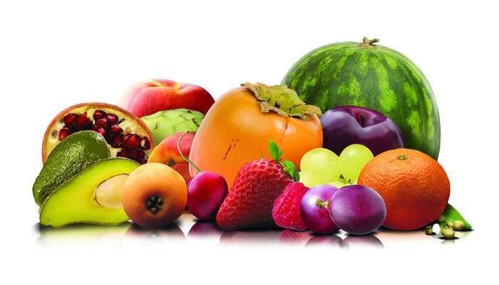 LOGO_Biologische Früchte