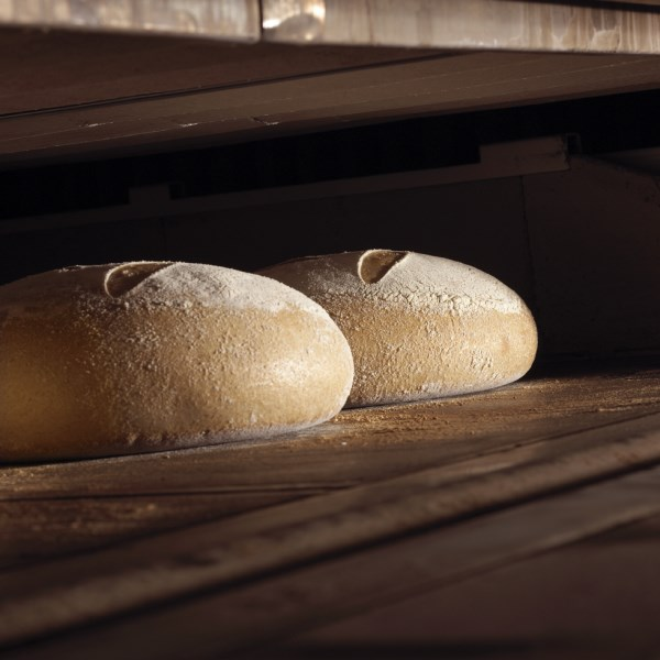 LOGO_Sourdough breads
