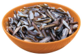 LOGO_Organic Wild Rice