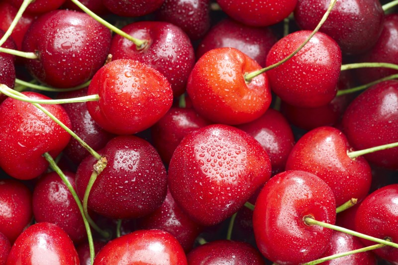 LOGO_Organic sour cherry