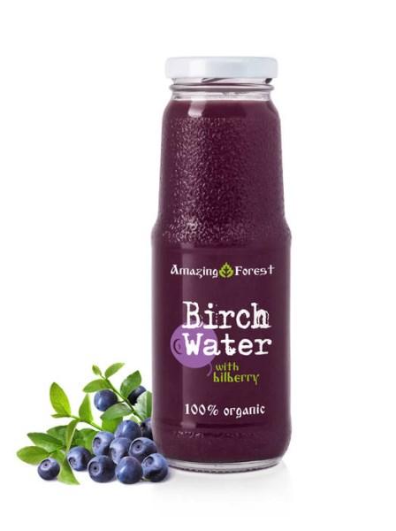 LOGO_Organic Birch Water with Bilberry