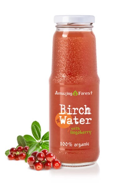 LOGO_Organic Birch Water with Lingonberry