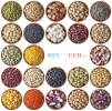 LOGO_Beans - cacao , coffee , mungo beans , natto , soybeans , lupin , pea , etc