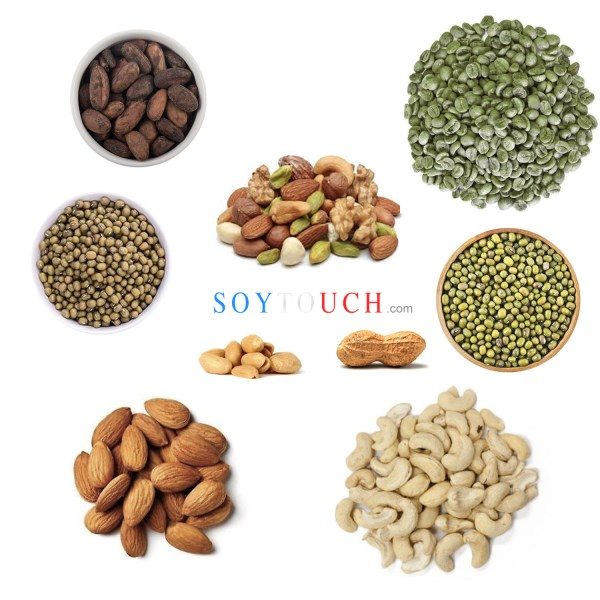 LOGO_Nuts - Peanuts , cashew nut , cashew in shell , almond paste , tiger nuts , hazelnuts etc ..