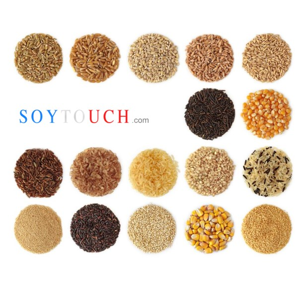 LOGO_Seed​ ​and​ ​grains - wheat dns or for bakery,  oat gluten free, fognion flour , white - black sesame etc