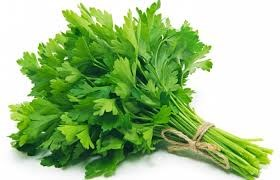 LOGO_Parsley