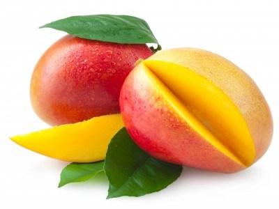 LOGO_Organic mango puree