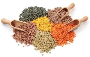 LOGO_Organic Pulses & lentils