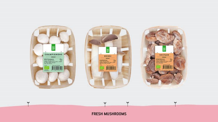 LOGO_Organic fresh mushrooms