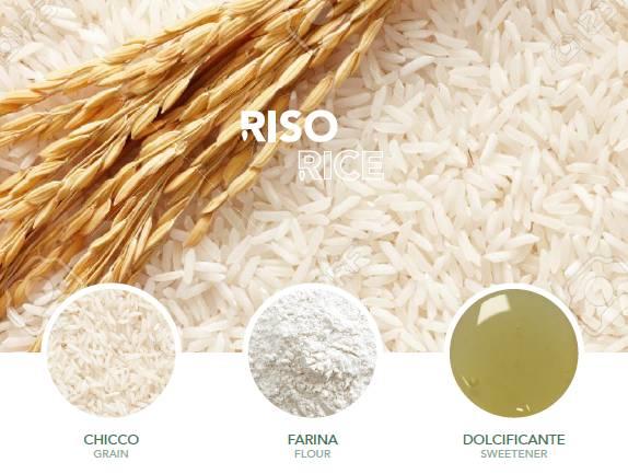 LOGO_Organic Rice: Grain, Flour, Rice syrup