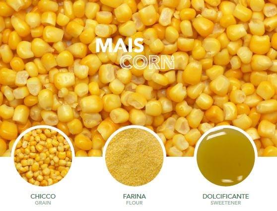 LOGO_Organic Corn: Grain, Flour, Corn Syrup