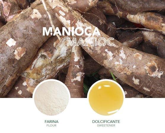 LOGO_Organic Manioc: Tapioca Starch, Tapioca Syrup
