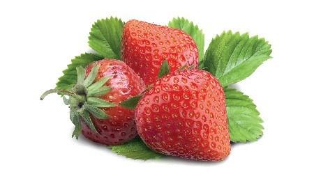 LOGO_Erdbeeren