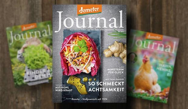 LOGO_Demeter Journal
